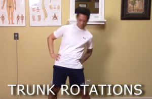 trunk_rotations1